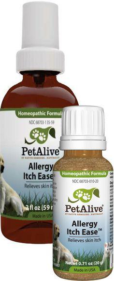 cat allergy medicine for humans