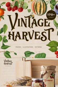 All the luxury of the fall harvest in this pack! Juicy bright fruits from the best vintage books will decorate your design. Set will be wonderful for modern logo design on vintage, flower, modern topics, for breathtaking posters, cards, invitations and other paper stationery, great for fabric, scrapbooking, branding, textile, surface design, suitable for social media, advertising, quotes, blogs, web, banners.