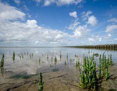 Tweede prijs fotowedstrijd Wadden Werelderfgoed. fotograaf: Bauke Monsma — bij Waddenzee.