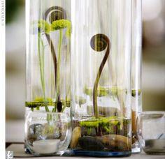 Upcycled wine bottle terrarium!