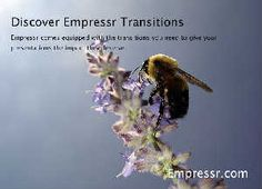 Empressr - The Best Online Rich Media Presentation Application - Can be embedded into Facebook, WordPress and more.