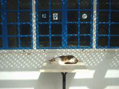 medina de essaouira du MAROC morocco エッサウィラ original photo