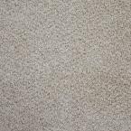 Carpet Sample-Clareview -Color Belgrade Texture 8 in. x 8 in.