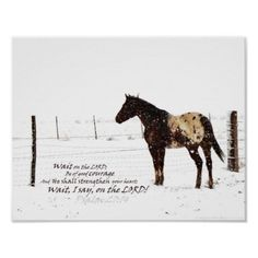 Winter Horse & Scripture Wait for the LORD; be strong and take heart and wait for the LORD- Psalm Beautiful Horse Pictures, Beautiful Horses, Country Song Quotes, Rodeo Quotes, Equine Quotes, Cowboy Quotes, Irish Quotes, Inspirational Horse Quotes, Winter Horse