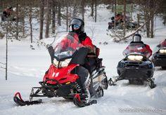 Snowmobile safari in Rovaniemi in  Lapland in Finland