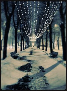 Riga Winter. Re-pinned by #Europass