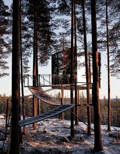 Hotel http://www.welcomebeyond.com/property/treehotel/