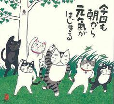相册详情:岡本 肇(Okamoto Hajime) - 豆瓣 Tap the link for an awesome selection cat and kitten products for