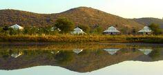 Aman-i-Khas Tents @ Ranthambore National Park in Rajasthan, India.