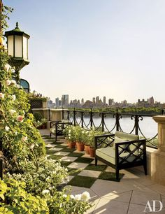 On the terrace of Bette Midler's New York apartment, 'Alchemist' climbing roses flourish