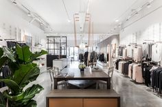 Studio Warm for Kit and Ace bespoke lighting installation at their London Redchurch Street store. Plant Images, Plant Pictures, Indoor Water Garden, Indoor Plants, Artificial Flowers And Plants, Light Installation, Make Color, Retail Design, Plant Decor