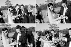Sirromet Weddings Ben Clark Photography