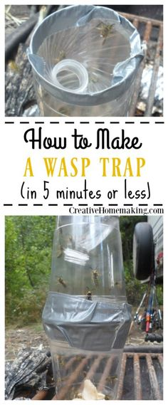 How to Make a Homemade Wasp Trap How to make an effective DIY wasp trap in 5 minutes or less with plastic drinking cups, a water bottle, and duck tape. Wasp Trap Bait, Wasp Traps, Bee Traps, Gardening For Beginners, Gardening Tips, Organic Gardening, Organic Farming, Homemade Wasp Trap, Hornet Trap