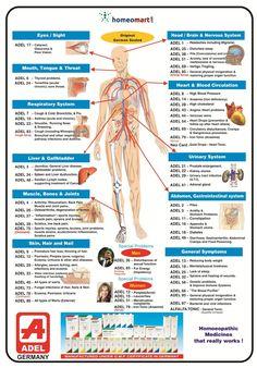 Blood Pressure Supplements, Blood Pressure Symptoms, Blood Pressure Diet, Blood Pressure Remedies, Smoothie, Brain Nervous System, Homeopathy Medicine, Natural Blood Pressure, Leadership