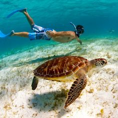 Outrageous new journeys for adventure lovers: St. Vincent and the Grenadines. Coastalliving.com