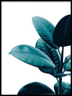 Green plant, plakat i gruppen Plakater hos Desenio AB (8319)