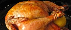 El pollo del amor