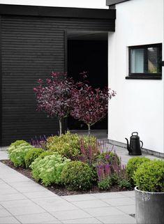 Garden Paving, Terrace Garden, House Landscape, Garden Landscape Design, Front Gardens, Outdoor Gardens, Modern Landscaping, Front Yard Landscaping, Lake Garden