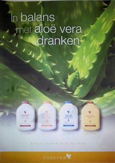 In balans met #aloë www.pure4ever.com #Forever #ExtraIncome #Pure4Ever
