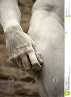 Michelangelo David Florence - Download From Over 67 Million High Quality Stock Photos, Images, Vectors. Sign up for FREE today. Image: 23522568