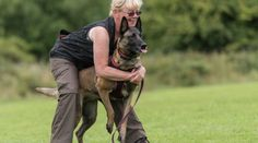 Corinne Wrend is a Belgian Malinois breeder and regular IPO competitor. Corinne has helped to pave the way for positive training in the sport of IPO by Belgian Malinois Breeders, Dog Training Tips, Conversation, Dogs, Pet Dogs, Doggies