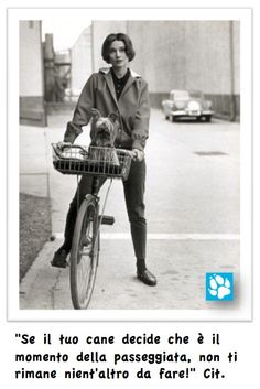 www.cancorso.it cancorso2013, cancorso, cani, cane, concorso, concorsi, contest, ilmessaggero, quotidiano, animali, storie, canstorie, coppie, cancoppie, citazione, citazioni, bicicletta, audrey Hepburn
