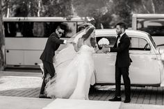 Santorini Wedding, Greece Wedding, Rami Malek Queen, Rami Said Malek, Queen Videos, Apple Picture, Health Memes, Queen Meme, Queen Albums