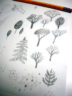 Sketches of trees… only one kind is going to be a part of my current project.  木。