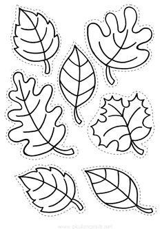 Yaprak Kalıbı | OkulöncesiTR l Preschool