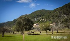 Country by Daudiovisual. Ses Fonts Ufanes (Mallorca)