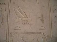 Egyptian Hieroglyphs with Bee & Sedge(Symbols of Upper & Lower Egypt-North/South,respectively) C. Ancient Egypt, Ancient History, Honey Bee Pollen, Honey Shop, Bee Photo, Vintage Bee, Bee Friendly, Insect Art, Save The Bees