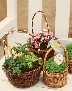 Plant flowers, herbs, or grasses in a basket to create a long-lasting gift. (Martha Stewart Living, April 2000)