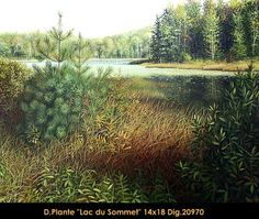 Lac du Sommet Hyperrealism, Canadian Artists, Acrylic Painting Canvas, Original Paintings, Country Roads, Artist