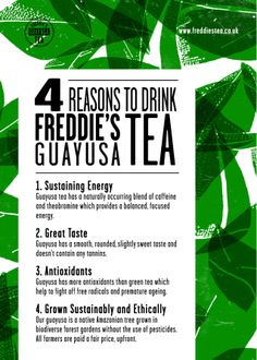 Freddie's Guayusa Tea. Find out why it makes a smoother pick me up than coffee.