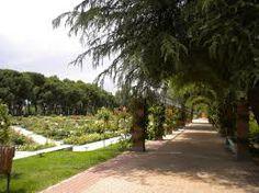 parque del oeste madrid -