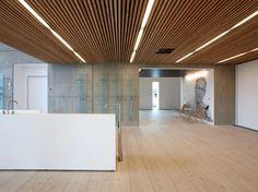 Falso techo imitación madera DINESEN CEILING - Dinesen