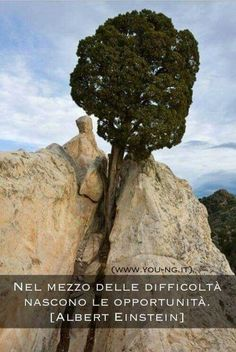Nel mezzo delle difficoltà nascono le opportunità. ~ A. Einstein