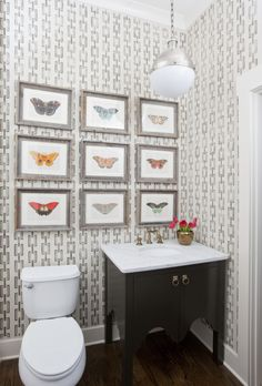 guest bathroom ideas half powder room design by jennifer schoenberger butterfly bathroom wall room lighting 168 best small guest bathroom images in 2018 home decor toilet