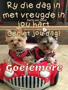 Afrikaanse Quotes, Good Night Gif, Goeie More, Special Quotes, Cute Quotes, Good Morning, Love You, Animals, Boss Wallpaper