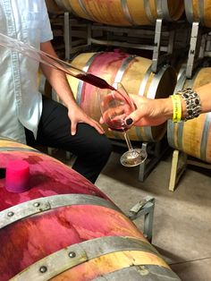 Barrel Tasting Day #1 - Tipsy in Sonoma: Fog Crest Vineyards, Red Car Wine, Russian River Vineyards, DeLoach Vineyards, Sunce Winery, Hook & Ladder Vineyards and Winery, and Wilson Winery