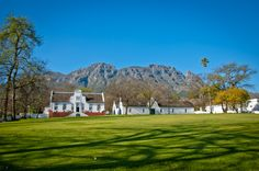 The iconic crisp, white, delicately detailed Cape Dutch architecture of South Africa stands so beautifully against nature's backdrop. South African Wine, Cape Dutch, Thatched Roof, Ancient Architecture, Wines, Holland, Nordic Walking, Mansions, Landscape