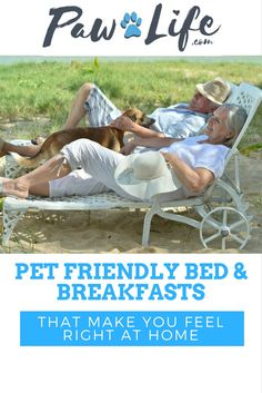 Taking a road trip with your pet can be challenging when searching for lovely pet-friendly bed and breakfasts where both you and your pet can relax and feel at home.