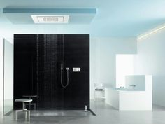 Balance Modules / RainSky E / Bad & Spa / Duschpanel / Dornbracht Modern Shower, Modern Bathroom, Luxury Shower, Modern Luxury, Apartment Design, Kitchen And Bath, Designer, Modern Design, Rain