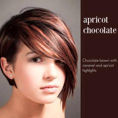 Hair style - Apricot Chocolate :: chocolate brown with caramel and apricot highlights