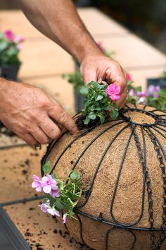 Idea Of Making Plant Pots At Home // Flower Pots From Cement Marbles // Home Decoration Ideas – Top Soop Hanging Plants Outdoor, Plants For Hanging Baskets, Hanging Flower Baskets, Outdoor Flowers, Hanging Planters, Fall Planters, Garden Planters, Hanging Orchid, Container Flowers
