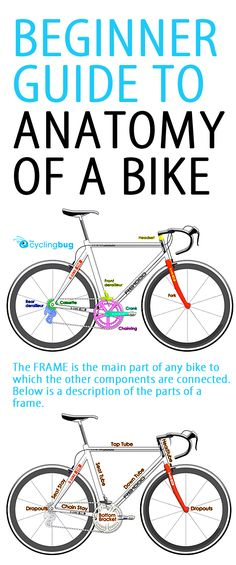 Beginner guide to anatomy of a bike. Never again do you have to be flummoxed in a bike shop when the assistant says your down tube needs replacing, and it's going to cost a fortune… Remarkable stories. Cycling For Beginners, Cycling Tips, Road Cycling, Beginner Cycling, Bullitt Bike, Mountain Biking, Mtb, Triathlon Training, Bicycle Maintenance