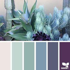 Design Seeds + Color Atlas by Archroma® Color Schemes Colour Palettes, Colour Pallette, Color Palate, Color Combos, Seeds Color Palettes, Decorating Color Schemes, Design Seeds, Blue Succulents, Paper Succulents
