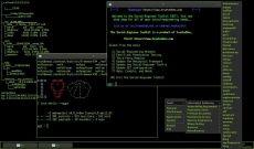 Cómo realizar un test de penetración con Raspberry Pi y PwnPi - Raspberry Pi
