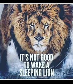 43 Trendy Quotes About Strength In Hard Times Be Grateful My Life Leo Quotes, King Quotes, Strong Quotes, Wisdom Quotes, Positive Quotes, Qoutes, Motivational Quotes, Inspirational Quotes, Tiger Quotes