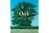 Before 40 - Oak By Stephen Taylor - Book Finder - Oprah.com